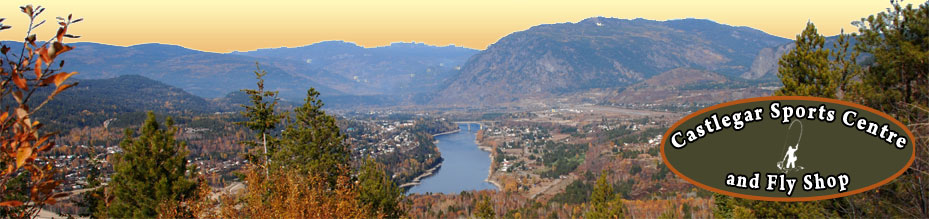 Castlegar and the mighty Columbia River