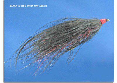 Black-N-Red Bird Fur Leech