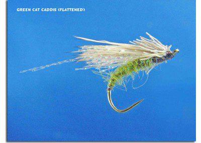 Green Cat Caddis (Flattened)