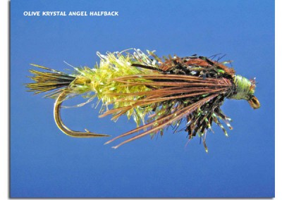 Olive Krystal Angel Halfback